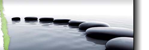Stepping Stones in Water Image